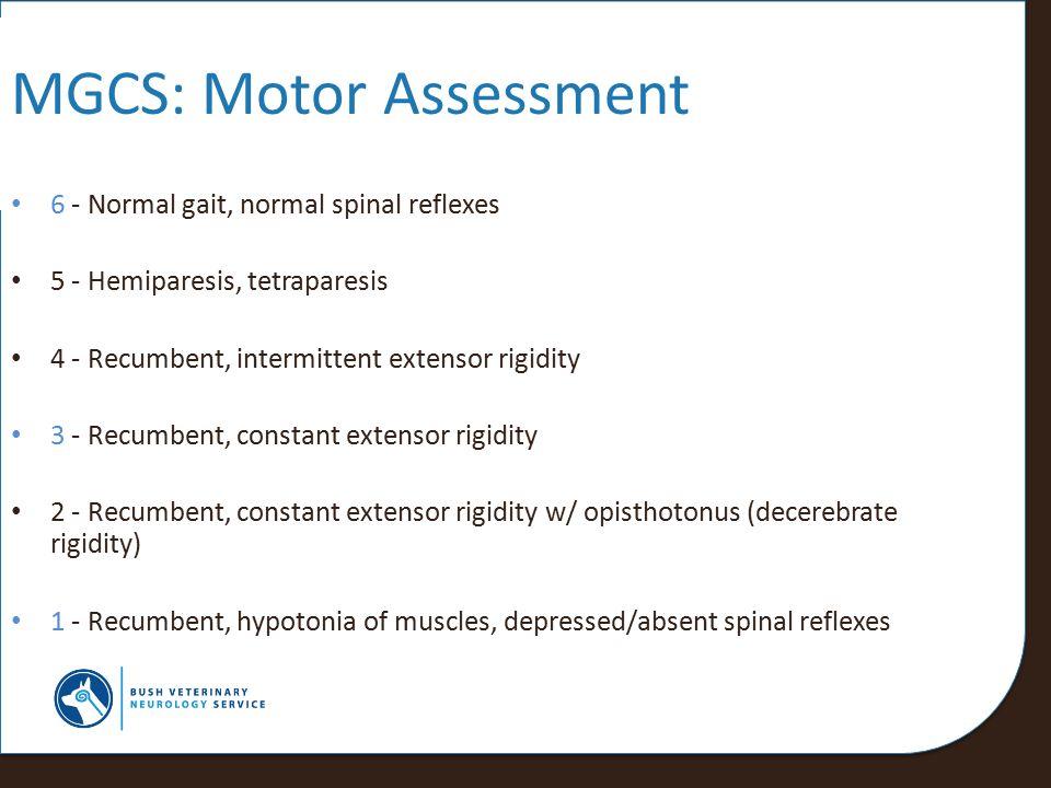 MGCS: Motor Assessment