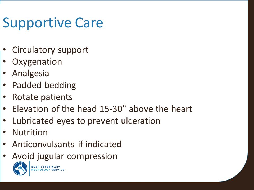 Supportive Care Circulatory support Oxygenation Analgesia