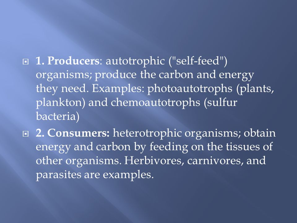 1. Producers: autotrophic ( self-feed ) organisms; produce the carbon and energy they need. Examples: photoautotrophs (plants, plankton) and chemoautotrophs (sulfur bacteria)