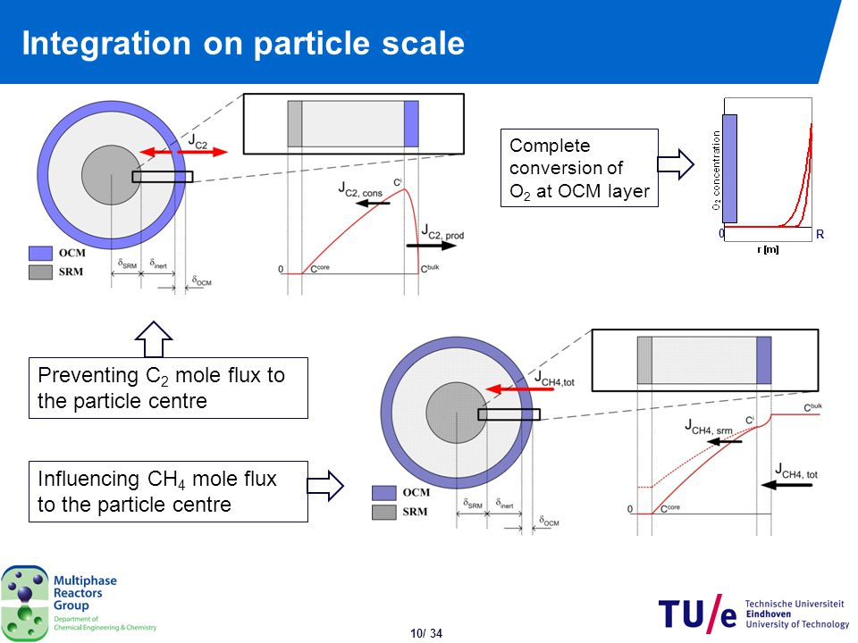 Numerical model: Particle scale