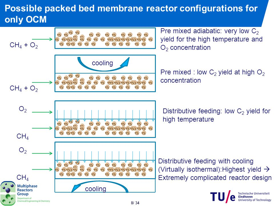 Packed bed membrane reactor concept