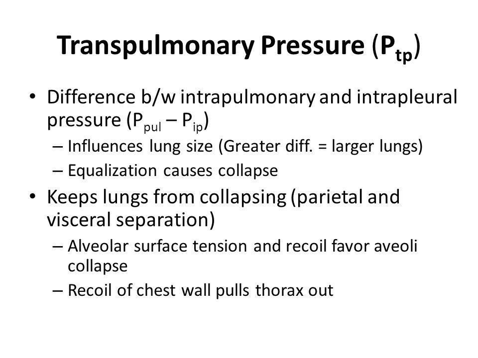 Transpulmonary Pressure (Ptp)