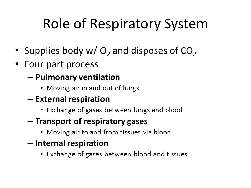 Role of Respiratory System