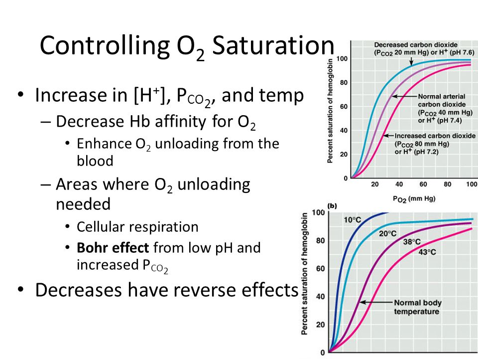 Controlling O2 Saturation