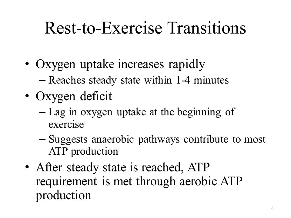 Rest-to-Exercise Transitions