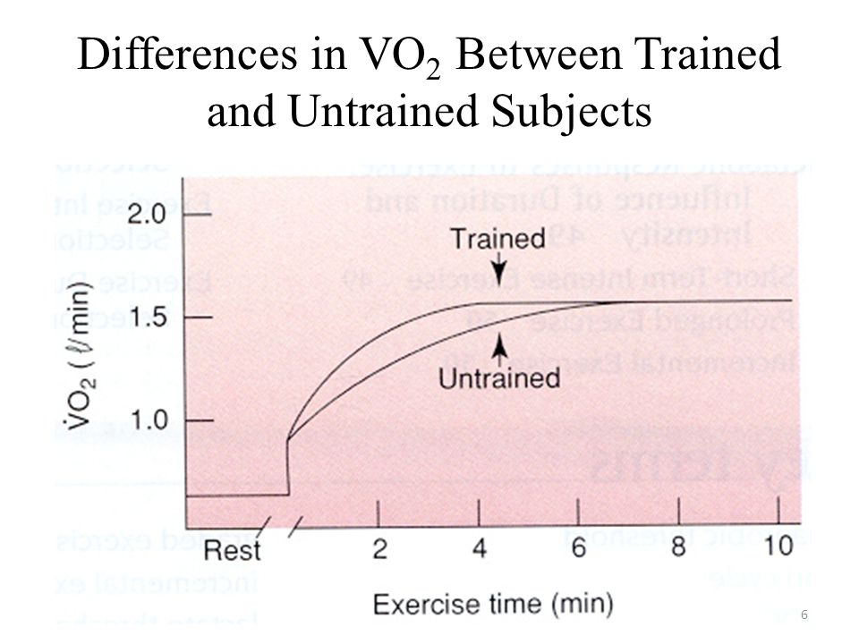 Differences in VO2 Between Trained and Untrained Subjects