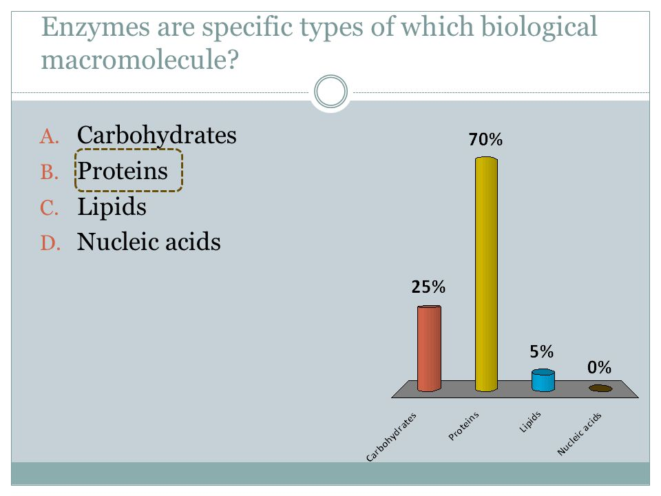 Enzymes are specific types of which biological macromolecule
