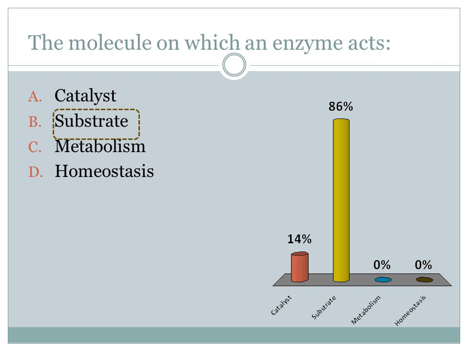 The molecule on which an enzyme acts: