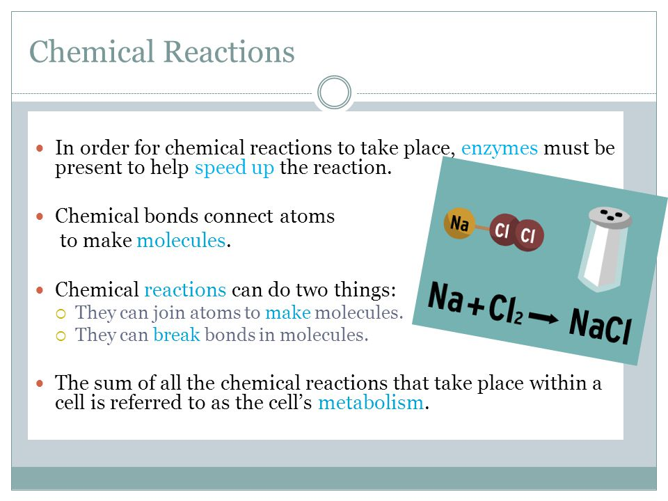 Chemical Reactions In order for chemical reactions to take place, enzymes must be present to help speed up the reaction.
