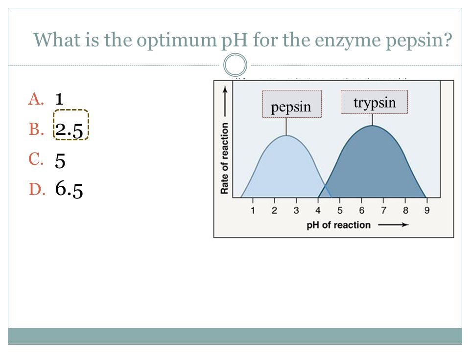 What is the optimum pH for the enzyme pepsin