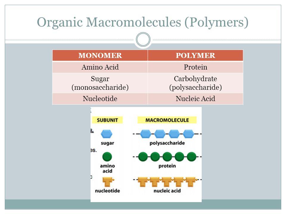 Organic Macromolecules (Polymers)