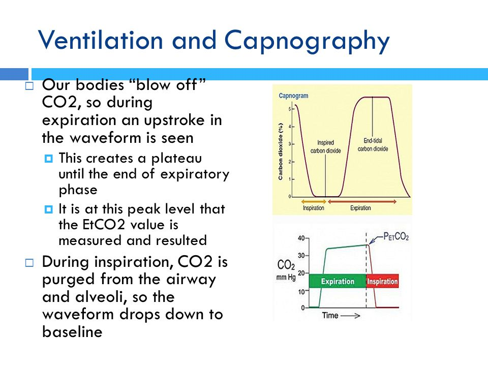 Ventilation and Capnography