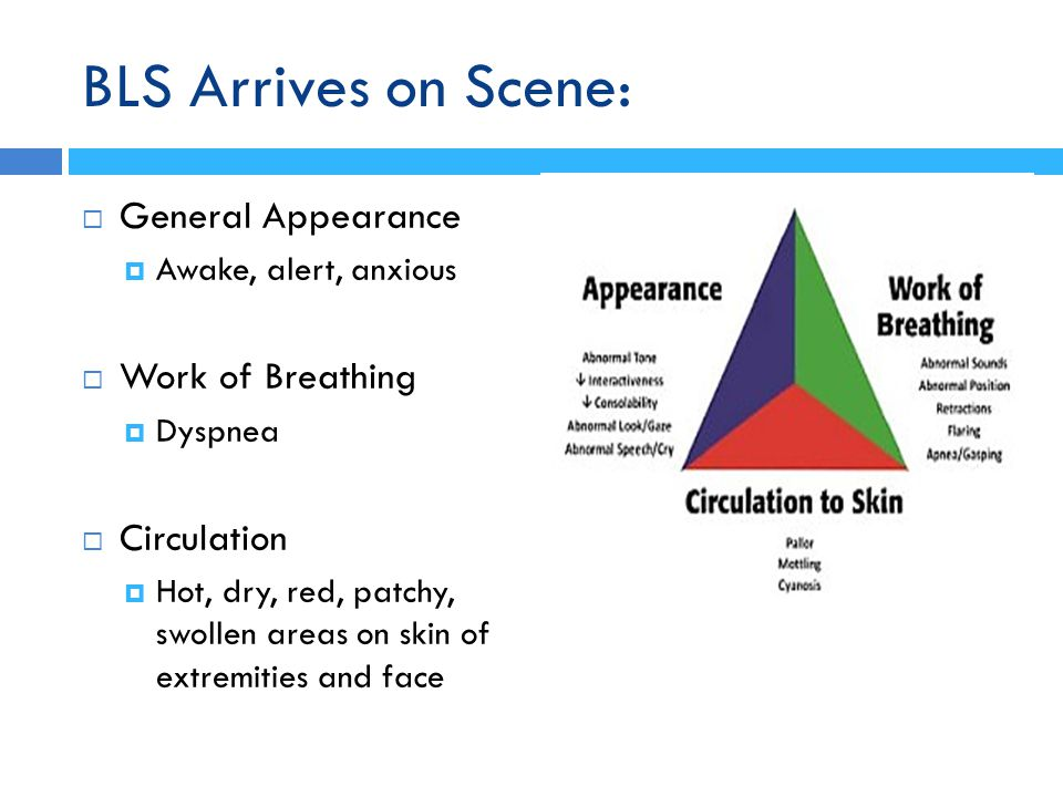 BLS Arrives on Scene: General Appearance Work of Breathing Circulation