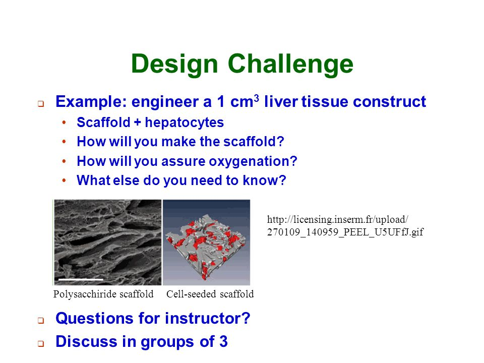 Design Challenge Example: engineer a 1 cm3 liver tissue construct