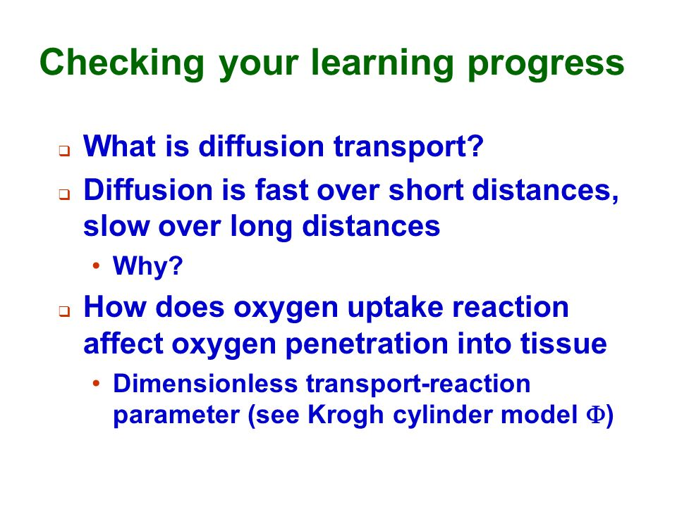 Checking your learning progress