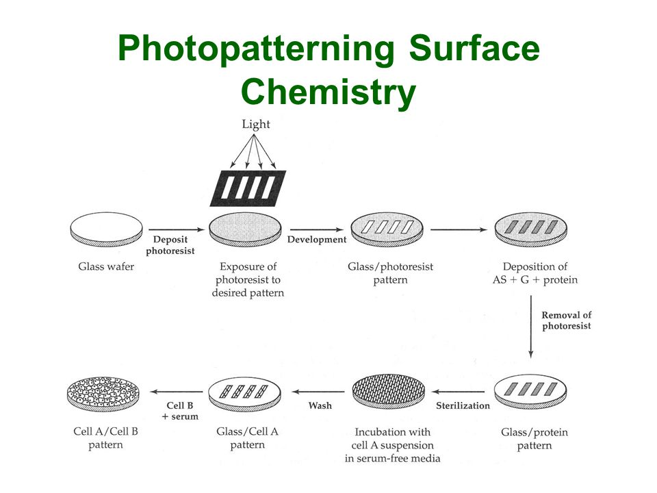 Photopatterning Surface Chemistry