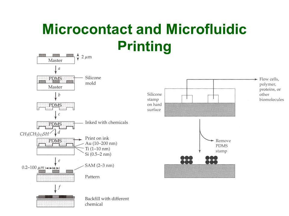 Microcontact and Microfluidic Printing