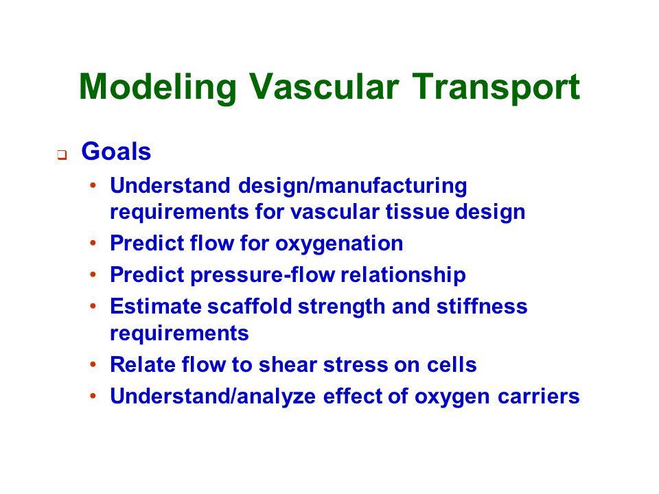 Modeling Vascular Transport