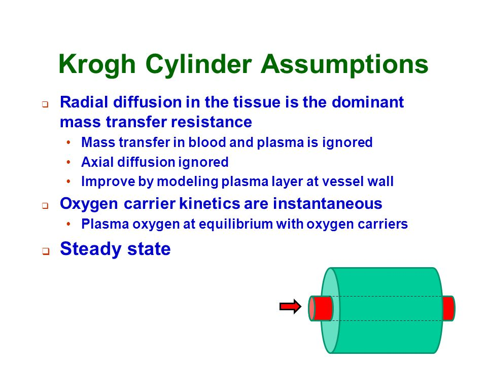 Krogh Cylinder Assumptions