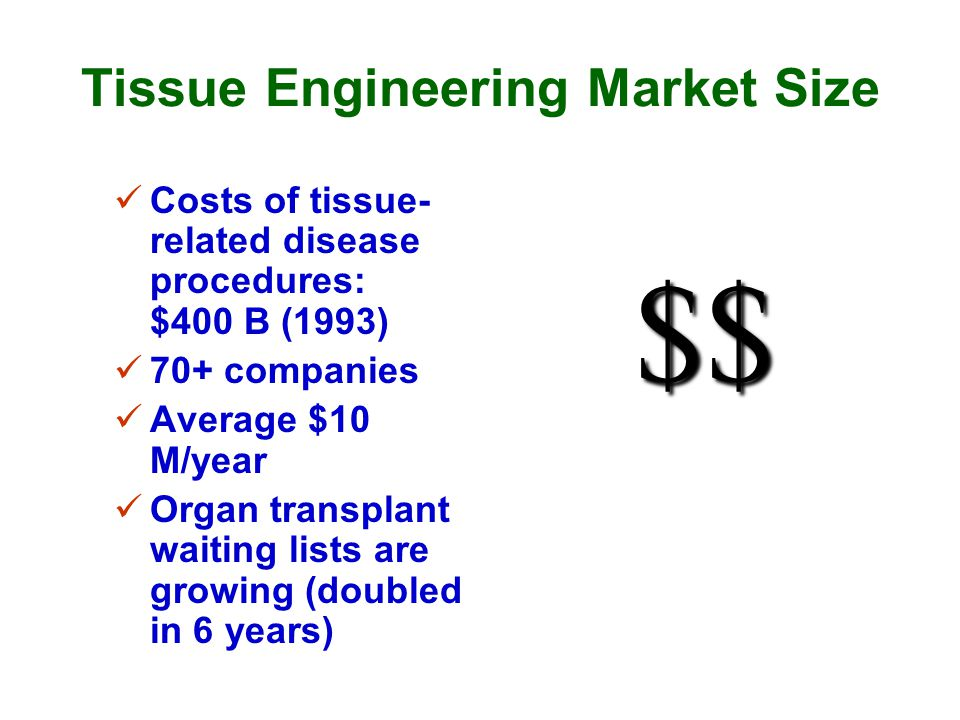 Tissue Engineering Market Size