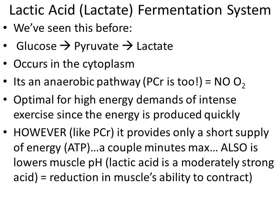 Lactic Acid (Lactate) Fermentation System