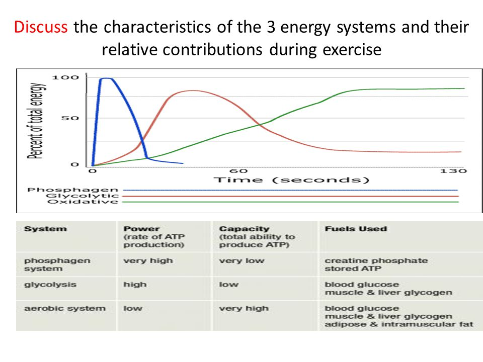 Discuss the characteristics of the 3 energy systems and their relative contributions during exercise