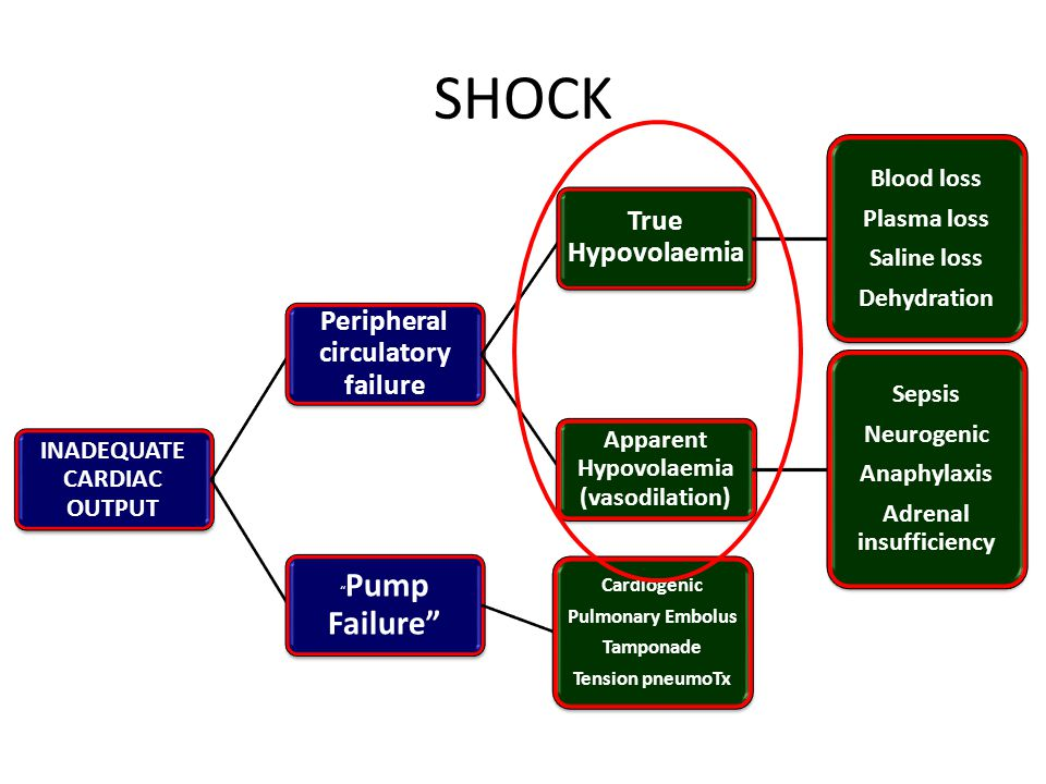 SHOCK Peripheral circulatory failure True Hypovolaemia