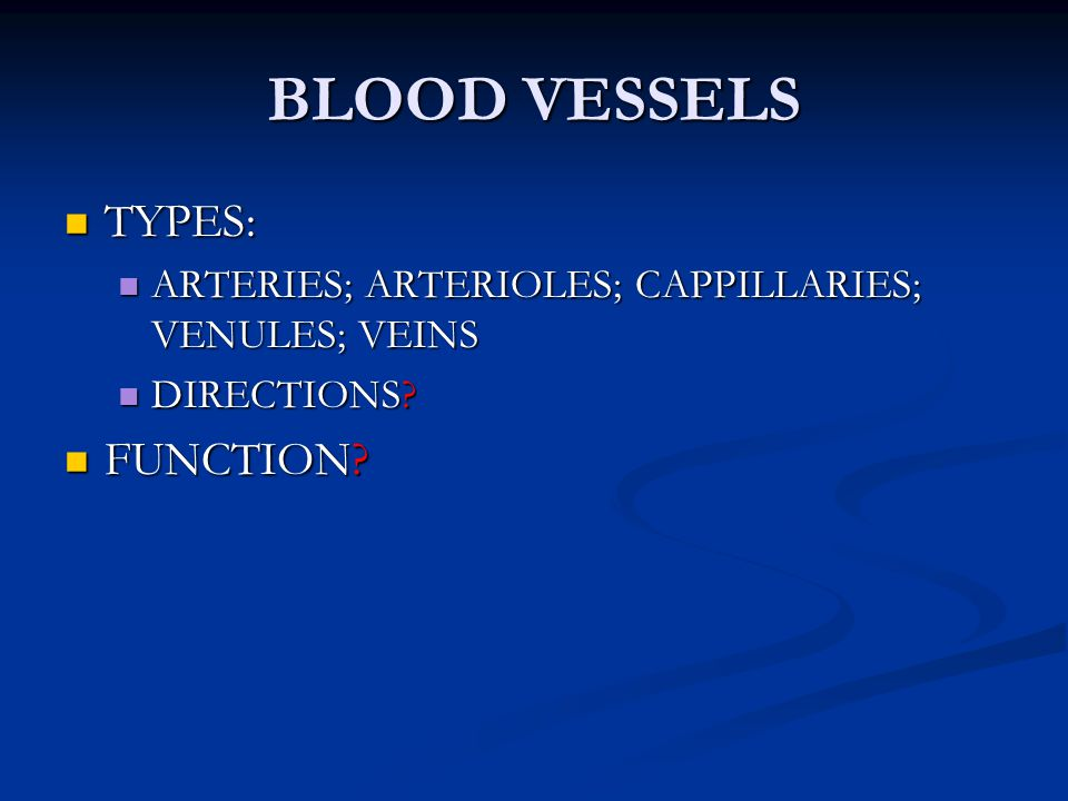 BLOOD VESSELS TYPES: FUNCTION