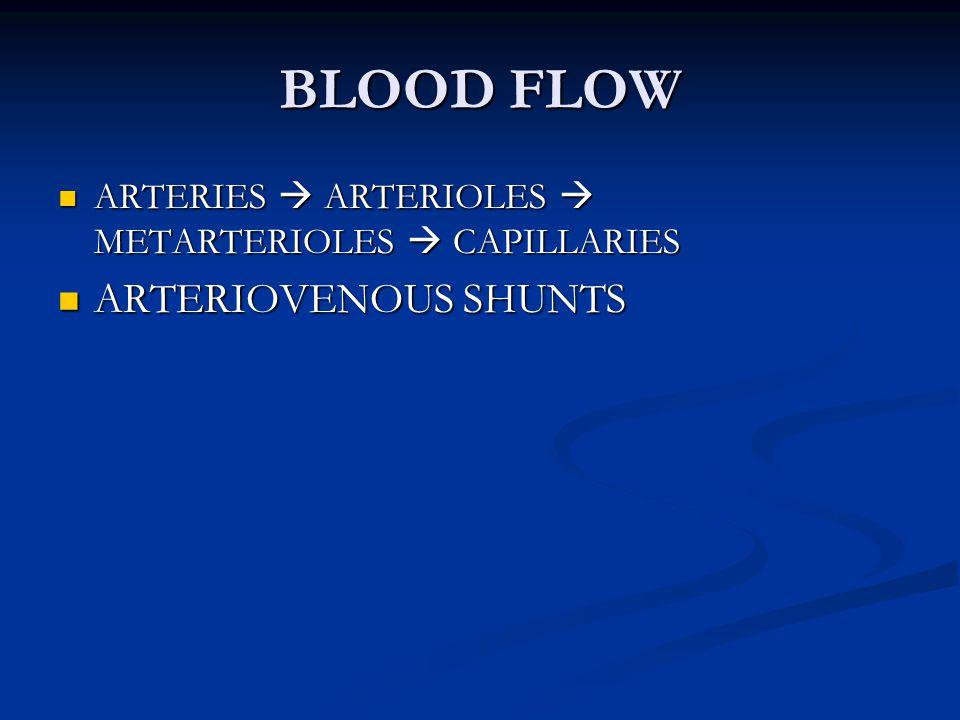 BLOOD FLOW ARTERIOVENOUS SHUNTS