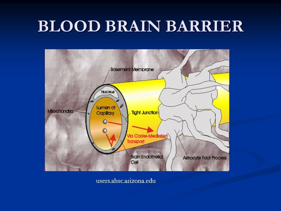 BLOOD BRAIN BARRIER users.ahsc.arizona.edu