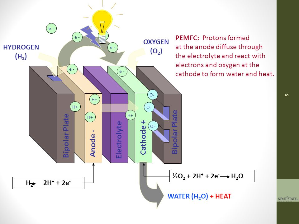 Bipolar Plate Cathode + Electrolyte Anode - FUEL CELL PRIMER