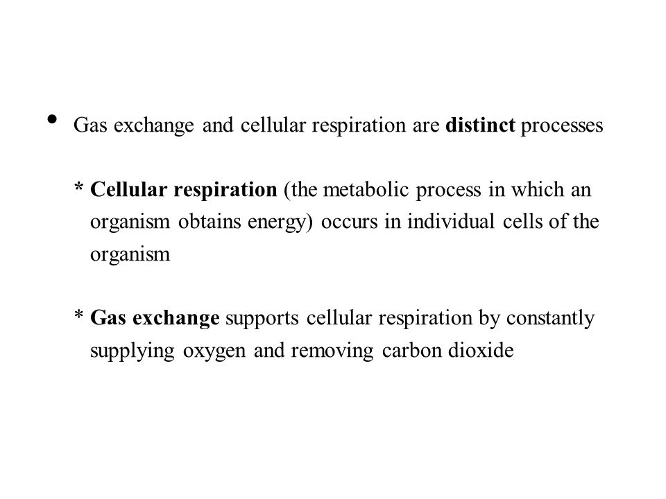 Gas exchange and cellular respiration are distinct processes