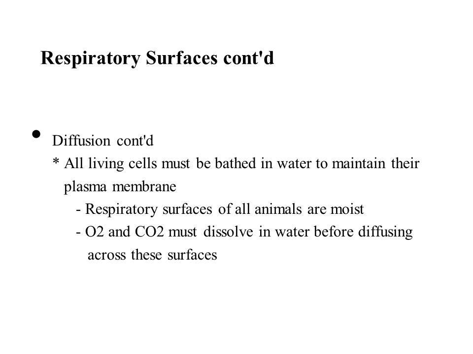 Respiratory Surfaces cont d
