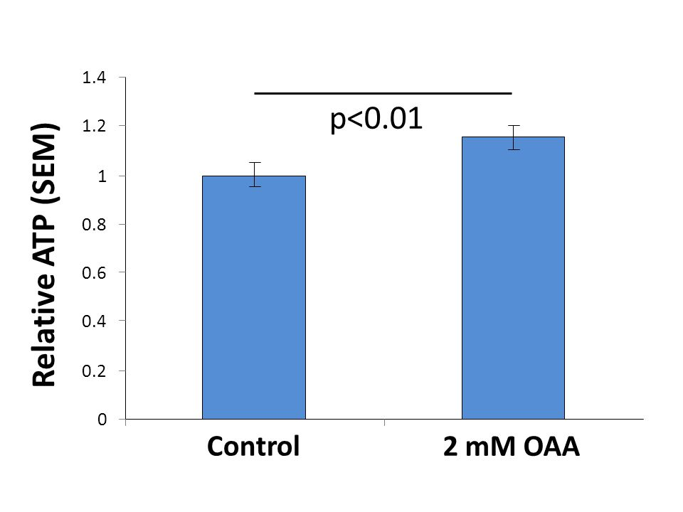 p<0.01 Relative ATP (SEM) Control 2 mM OAA 1.4 1.2 1 0.8 0.6 0.4