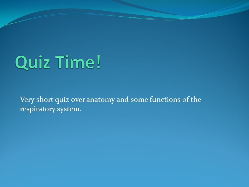 Quiz Time! Very short quiz over anatomy and some functions of the respiratory system.