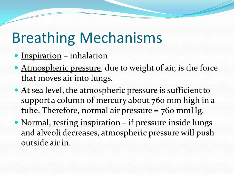 Breathing Mechanisms Inspiration – inhalation