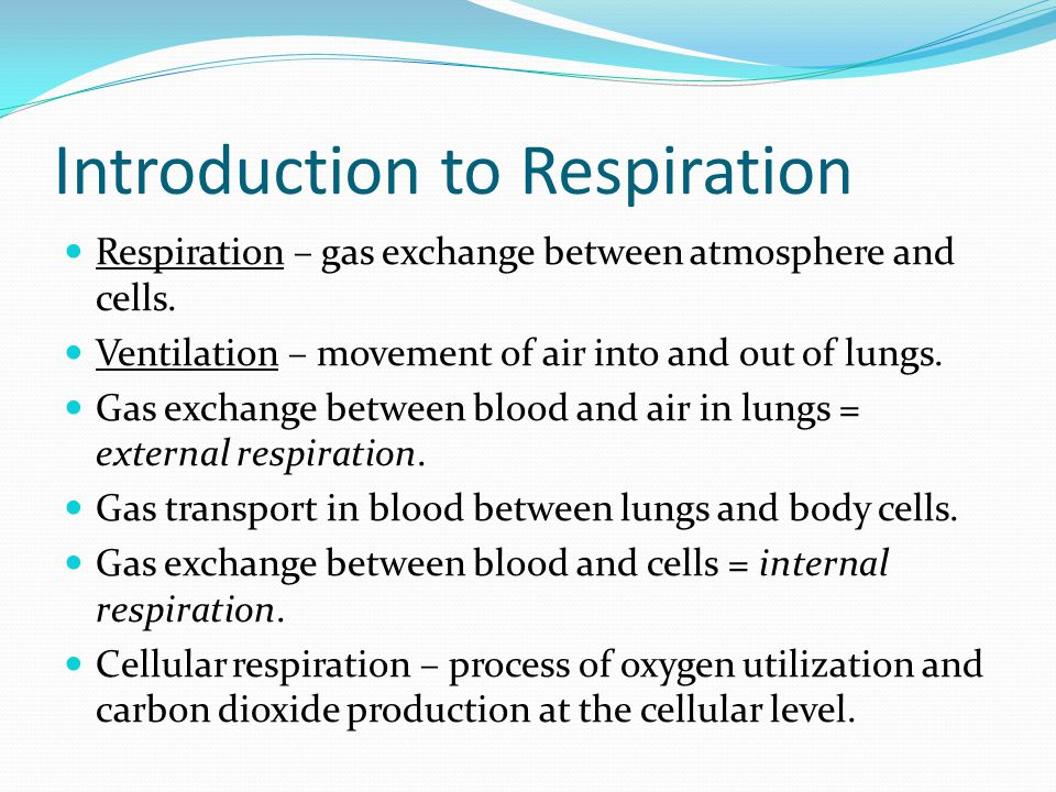 Introduction to Respiration