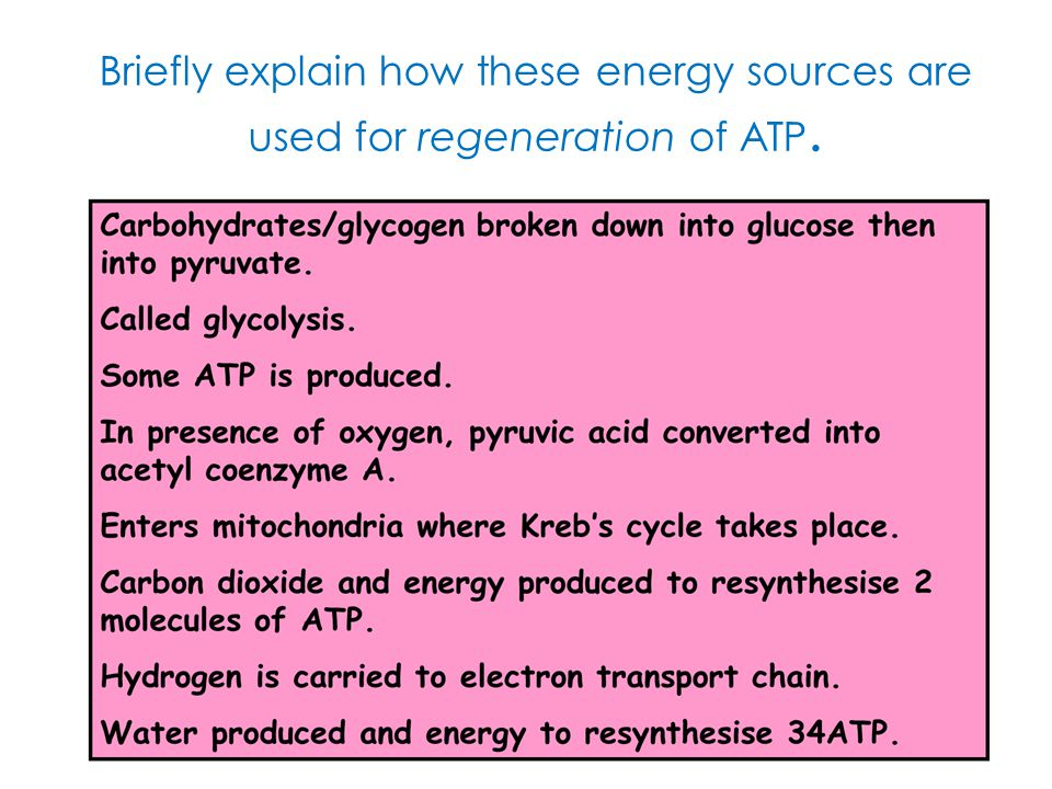Briefly explain how these energy sources are used for regeneration of ATP.