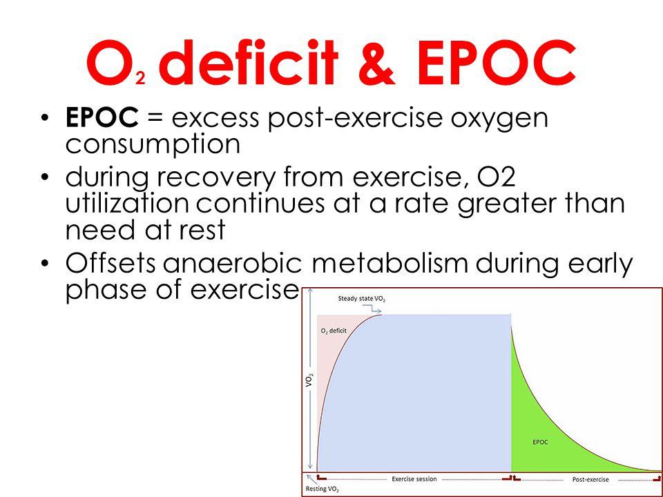 O2 deficit & EPOC EPOC = excess post-exercise oxygen consumption