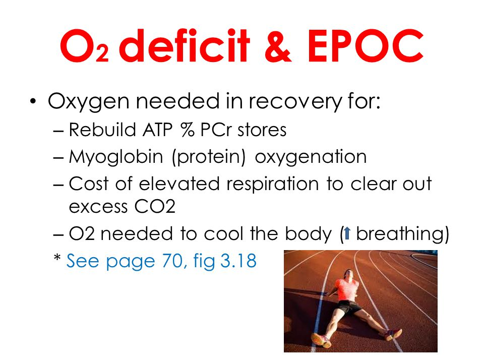 O2 deficit & EPOC Oxygen needed in recovery for: