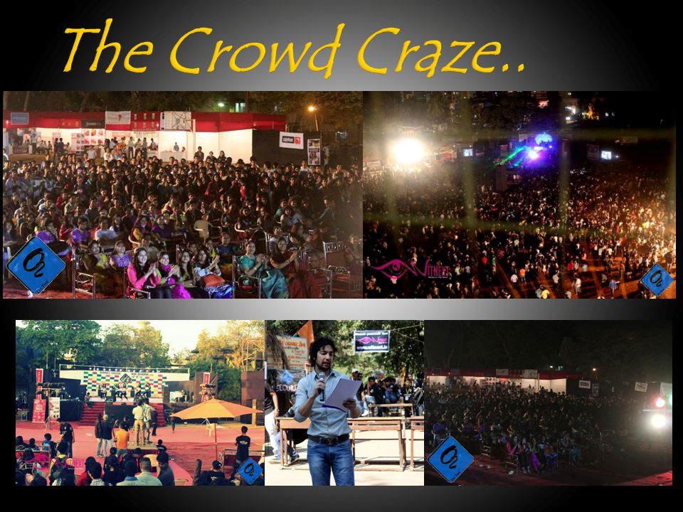 The Crowd Craze..