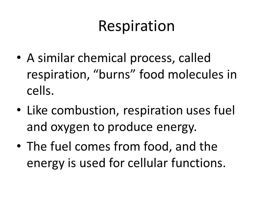Respiration A similar chemical process, called respiration, burns food molecules in cells.