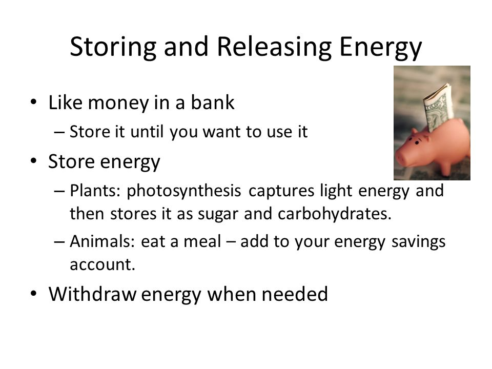Storing and Releasing Energy