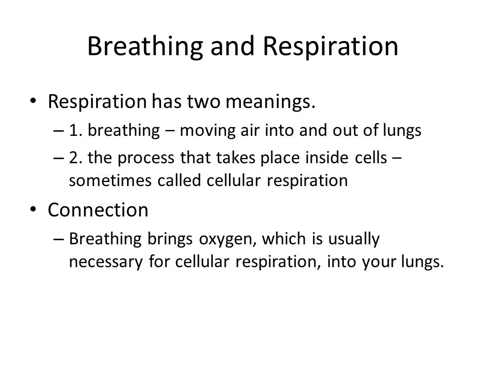 Breathing and Respiration