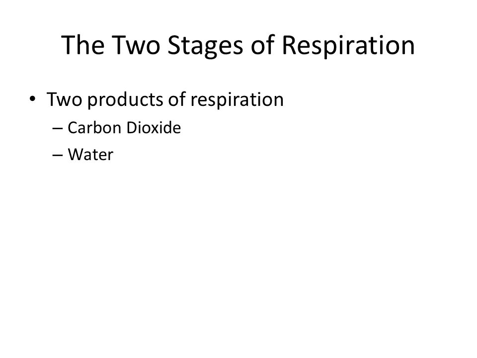The Two Stages of Respiration