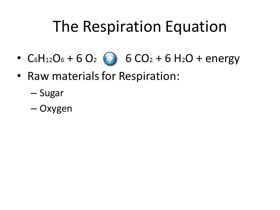 The Respiration Equation