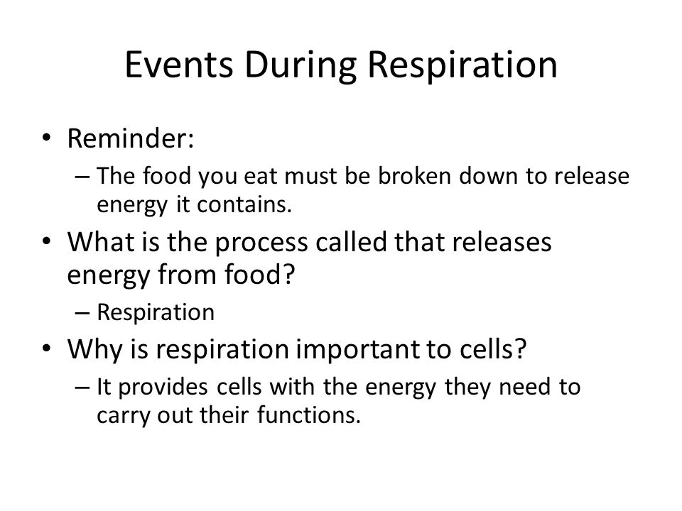 Events During Respiration