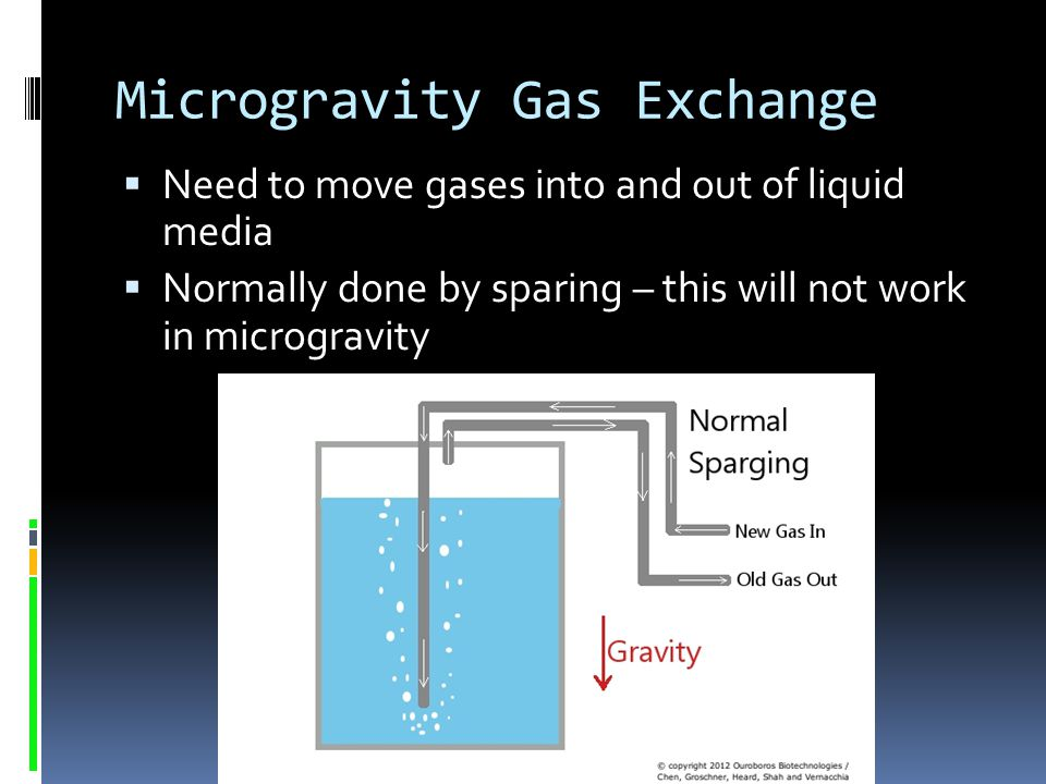 Microgravity Gas Exchange
