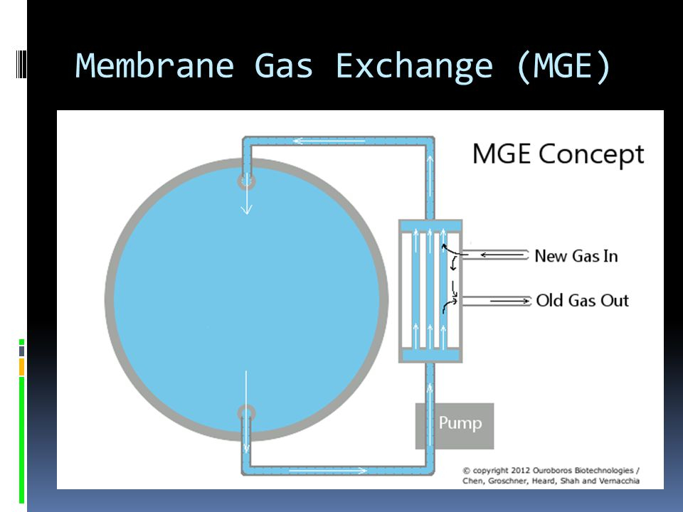 Membrane Gas Exchange (MGE)