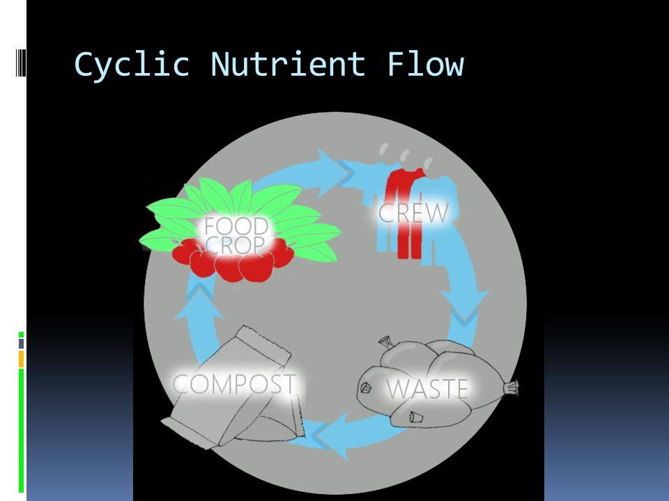 Cyclic Nutrient Flow